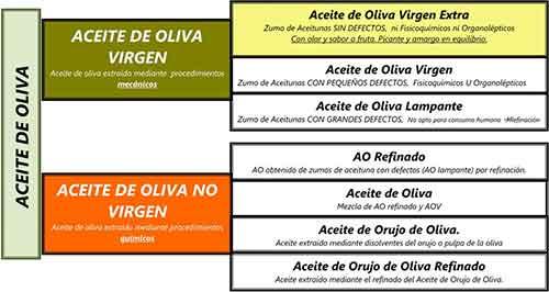 clasificacion aceite de oliva