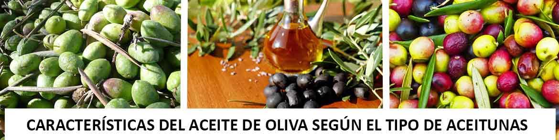 Características del aceite de oliva segun el tipo de aceitunas